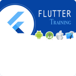 Flutter Training in Mumbai