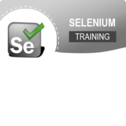 Selenium Training Institute In Mumbai