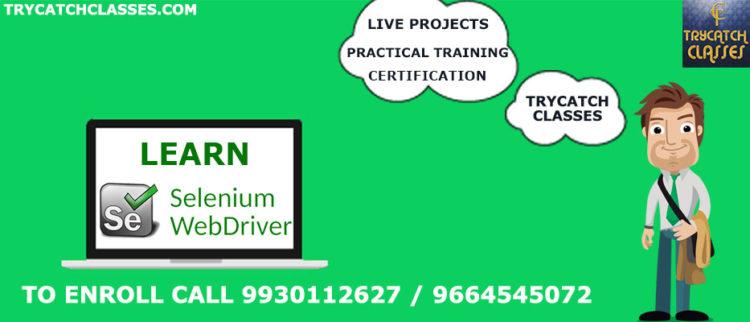 Selenium Training Institute In Mumbai